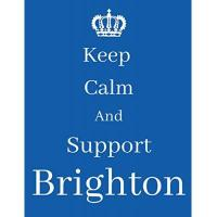 Brighton Keep Calm And Support Brighton: Brighton Notebook/ journal/ Notepad/ Diary For Fans. Men, Boys, Women, Girls And Kids | 100 Black Lined Pages | 8.5 x 11 inches | A4