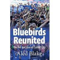 Cardiff City Bluebirds Reunited: The Fall and Rise of Cardiff City