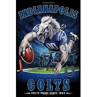 Indianapolis Colts Indianapolis Colts Weekly Planner Lined Notebook Journal, 100 Pages (6 x 9 Inches) Blank Ruled Writing Journal With Inspirational Quotes, Perfect ... Ideas .: Best Gift For Indianapolis Colts Fan