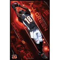 Cincinnati Bengals A.J. Green Cincinnati Bengal Birthday Reminder Lined Notebook Journal, 100 Pages (6 x 9 Inches) Blank Ruled Writing Journal With Inspirational Quotes, ... Ideas .: Best Gift Cincinnati Bengal Fan