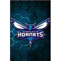 Charlotte Hornets CHARLOTTE HORNETS: (Basketball Club) Notebook / Journal / bloc note - 120 pages 6x9